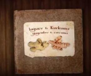 gingembre curcuma